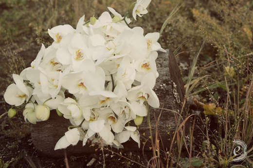 white draping orchid bouquet
